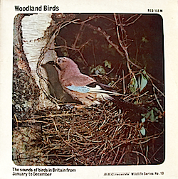 BBC Wildlife Series No.10 - Woodland Birds original soundtrack
