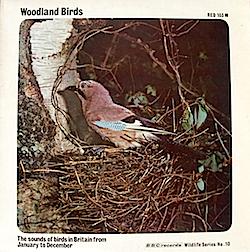 BBC Wildlife Series No.10 - Woodland Birds original soundtrack