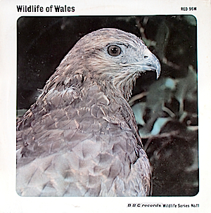 BBC Wildlife Series No.11 - Wildlife of Wales original soundtrack