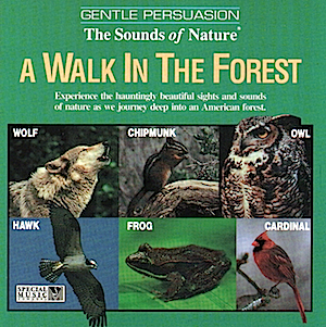 Gentle Persuasion: A walk in the forest original soundtrack