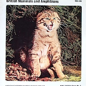 BBC Wildlife Series No.2 - British Mammals and Amphibians original soundtrack