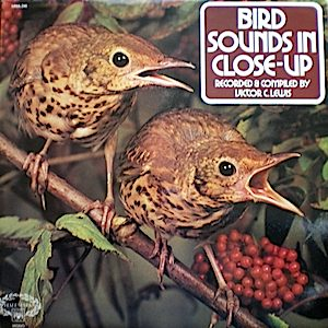 Bird Sounds in Close-up original soundtrack