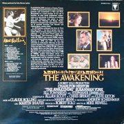 awakening LP back