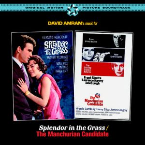 Music For Splendor In The Grass/the Manchurian Candidate